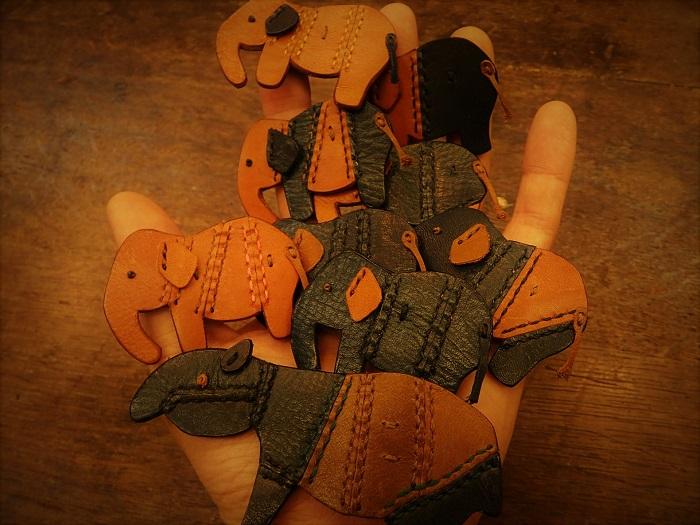 Hand elephant taken in