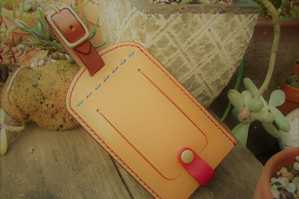 Belt attached pass case